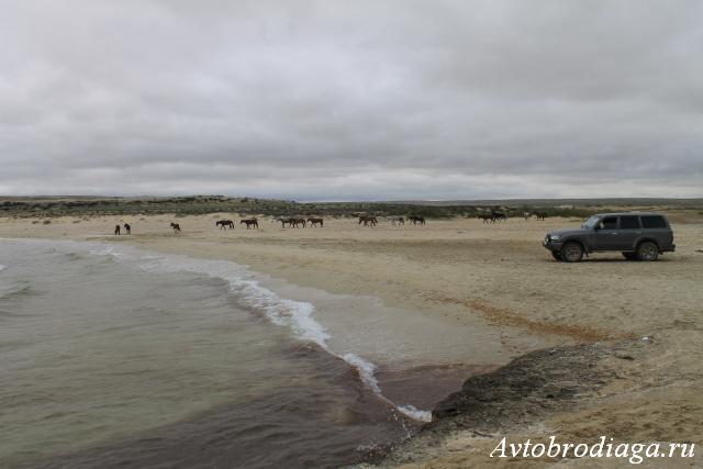 Каспийское море, западный Казахстан